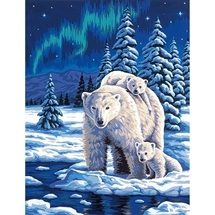 Polar Night Tapestry Canvas