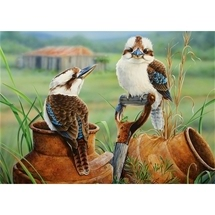Wild Wings - Countrysiders (Kookaburras)