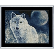 White Wolf In Moonlight