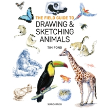 Drawing and Sketching Animals