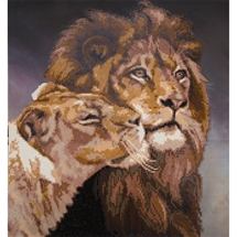 Lions Tenderness