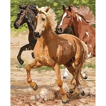 Galloping Horses Paint-By-Numbers Pro