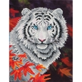 White Tiger in Autumn_46724_0