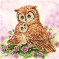 Mother and Baby Owl_48363_0