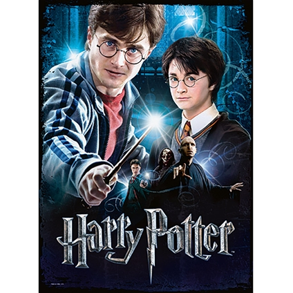Harry Potter Poster Puzzles